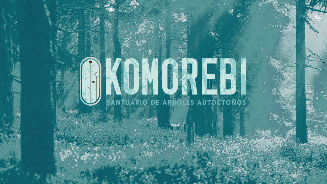 KOMOREBI background